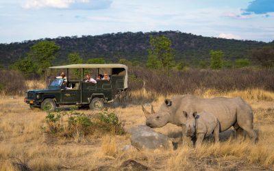 Rhino-Ongava-Tented-Camp-Namibia