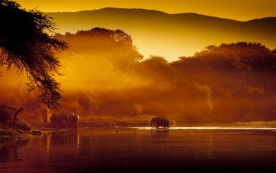Sunset at Lower Zambezi National Park, Zambia.